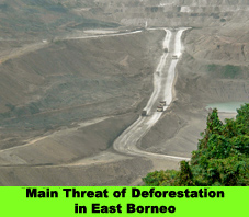 Main Threat of Deforestation in East Borneo